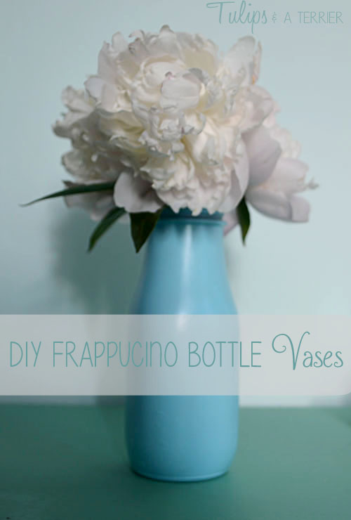 DIY Frappucino Bottle Vases - Tulips & A Terrier