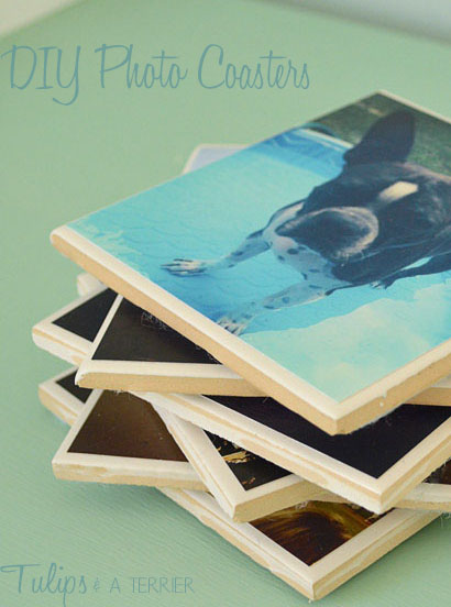 DIY Photo Coasters -Tulips & A Terrier